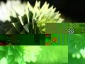 img_6588-small-jpg_backup